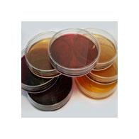 Питательные среды и диски с антибиотиками